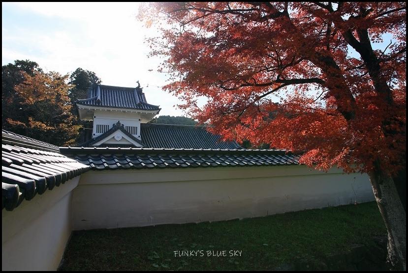 もみじと仙台城址_c0145250_08405910.jpg