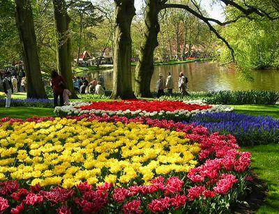 '19,11,27(水)2007年のオランダの「キューケンホフ公園」!_f0060461_11175781.jpg