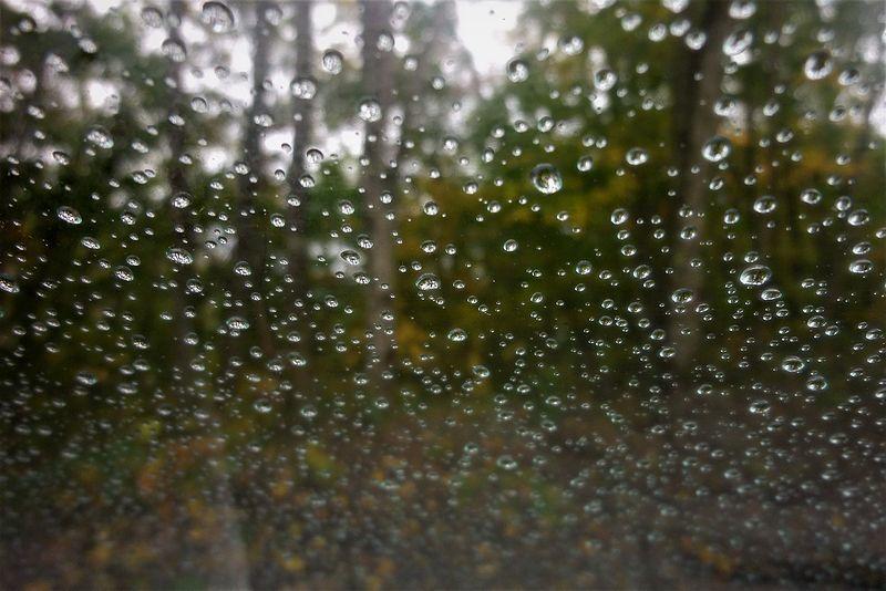 つめたい雨_b0150077_22114845.jpg
