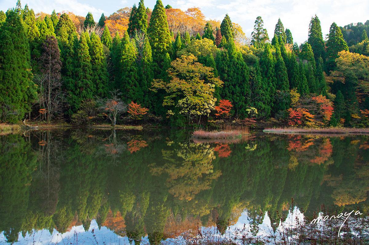 秋色の池_c0085877_06172678.jpg