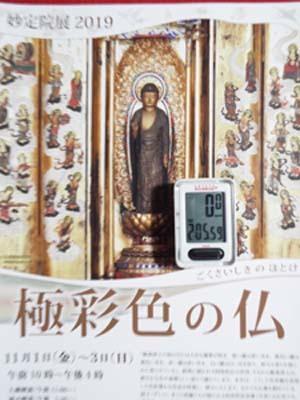 文化財ウィーク1 妙定院・増上寺・心光院まで見たこと_f0211178_17104120.jpg