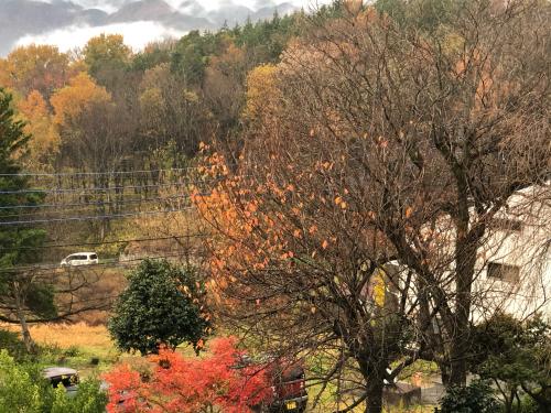 雨、雨☂️、こんなに綺麗な秋の紅葉&#127809;を見られるなんて、思いませんでした。今、この秋一番の赤です。日野春の秋、間もなく終わります。</div>_d0338282_07494257.jpg