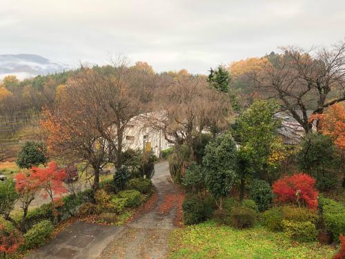 雨、雨☂️、こんなに綺麗な秋の紅葉&#127809;を見られるなんて、思いませんでした。今、この秋一番の赤です。日野春の秋、間もなく終わります。</div>_d0338282_07494576.jpg
