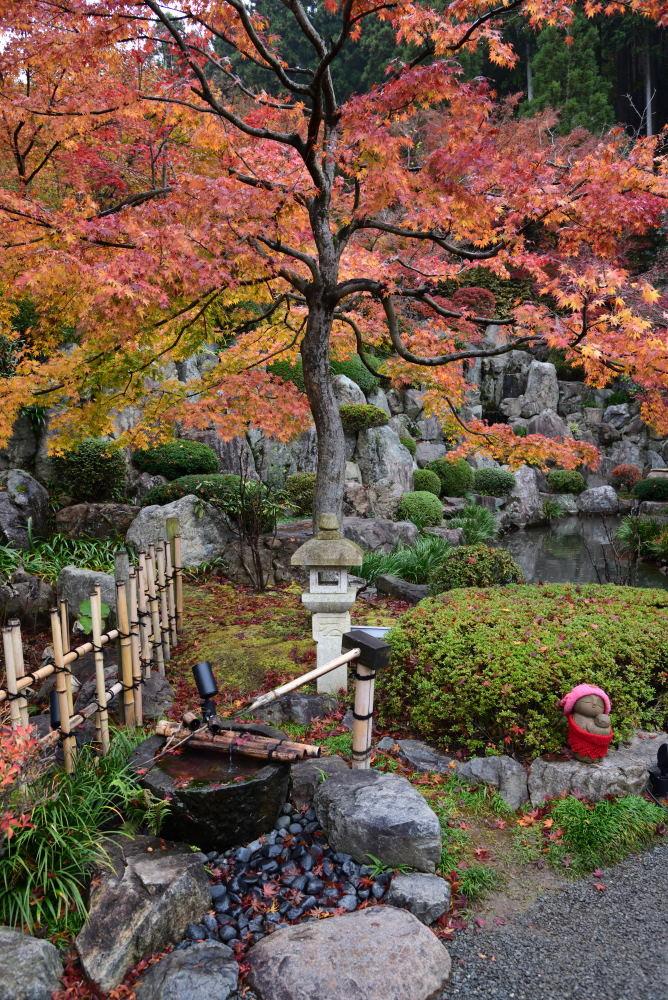宝徳寺の紅葉_f0202686_16191811.jpg
