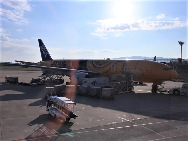 藤田八束の飛行機ANAの楽しみ方@ANAで楽しい下界の絶景、歴史を訪ね、最先端技術を見つけ、自然と文明の進み方を見る・・・そんな瞬間_d0181492_00131256.jpg