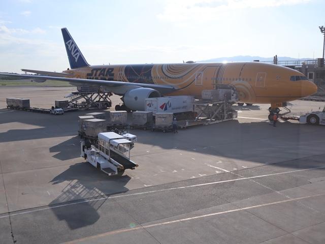 藤田八束の飛行機ANAの楽しみ方@ANAで楽しい下界の絶景、歴史を訪ね、最先端技術を見つけ、自然と文明の進み方を見る・・・そんな瞬間_d0181492_00132764.jpg