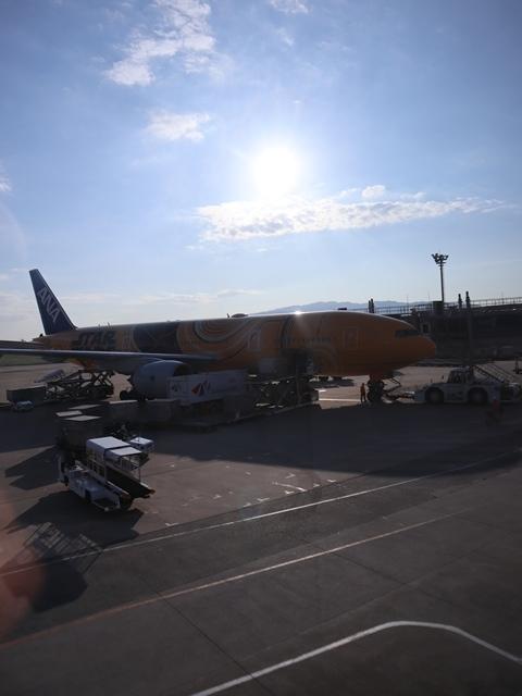 藤田八束の飛行機ANAの楽しみ方@ANAで楽しい下界の絶景、歴史を訪ね、最先端技術を見つけ、自然と文明の進み方を見る・・・そんな瞬間_d0181492_00134239.jpg