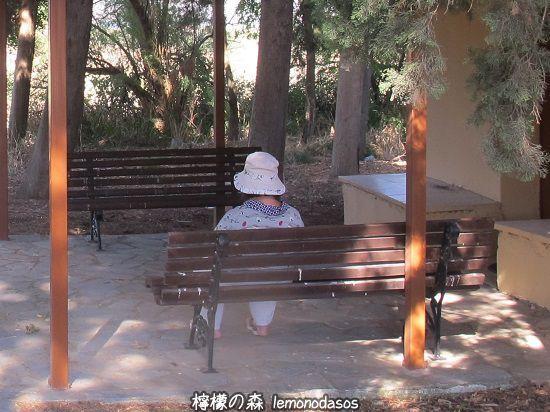 パルナッソス周辺の古代ダウリスまでドライブ _c0010496_19071919.jpg