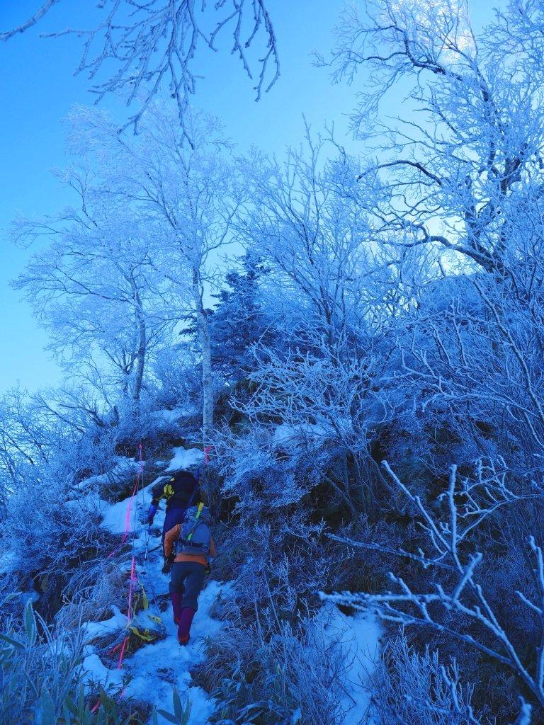 風不死岳北尾根、2019.11.26_f0138096_16174870.jpg