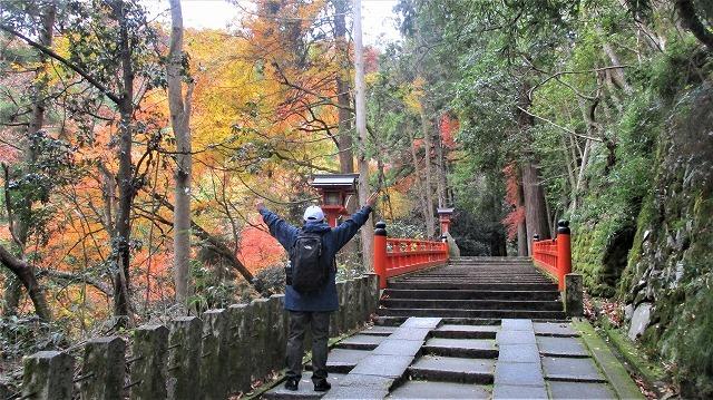 500段の階段で本殿へ鞍馬寺紅葉_b0163804_15373961.jpg