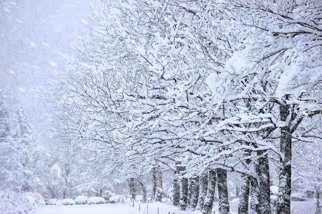 冬と言えばこれ。あなたの見つけた雪景色