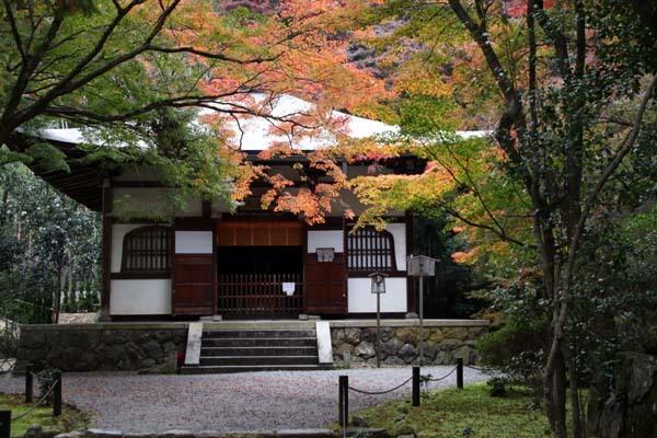 紅葉がさかり 浄住寺と地蔵院_e0048413_21063702.jpg