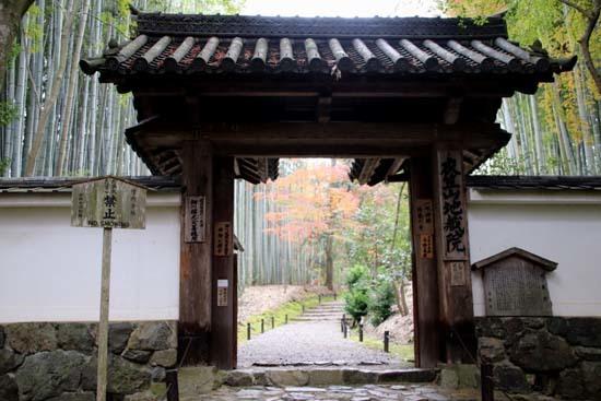 紅葉がさかり 浄住寺と地蔵院_e0048413_21064977.jpg