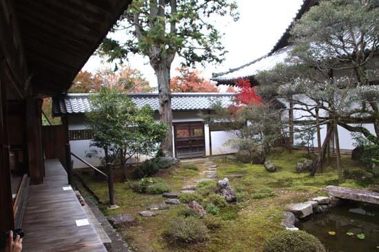 紅葉がさかり 浄住寺と地蔵院_e0048413_21065829.jpg