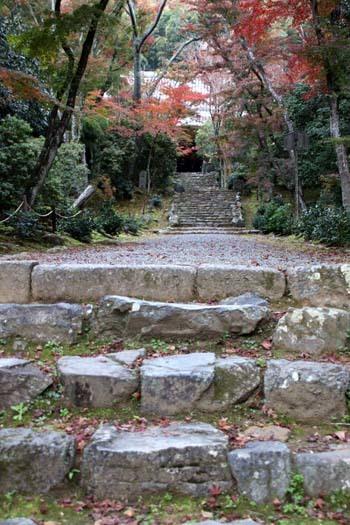 紅葉がさかり 浄住寺と地蔵院_e0048413_21071534.jpg