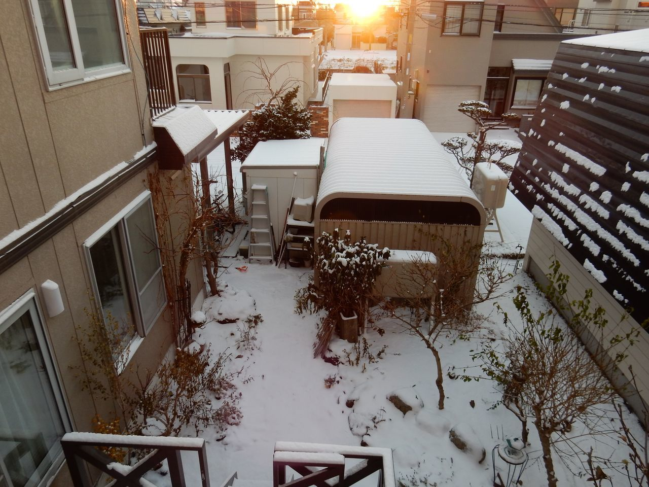 真冬日に猛吹雪がやってきた_c0025115_21353518.jpg