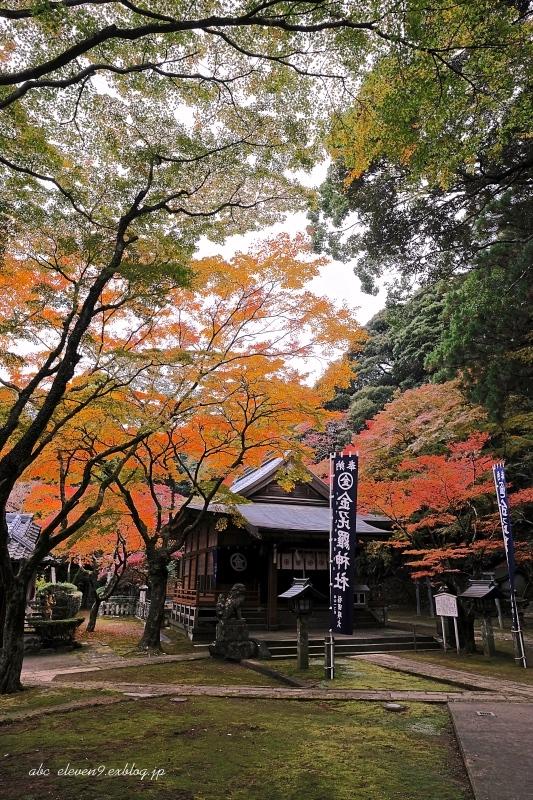 金比羅神社(長崎市)_f0315034_15454366.jpg