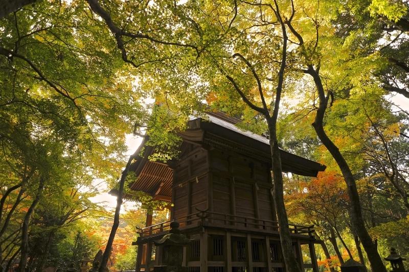 金比羅神社(長崎市)_f0315034_15471160.jpg