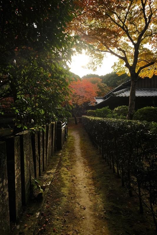 金比羅神社(長崎市)_f0315034_15481459.jpg