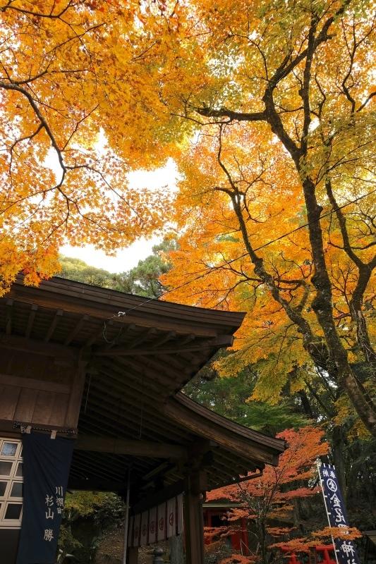 金比羅神社(長崎市)_f0315034_15484739.jpg