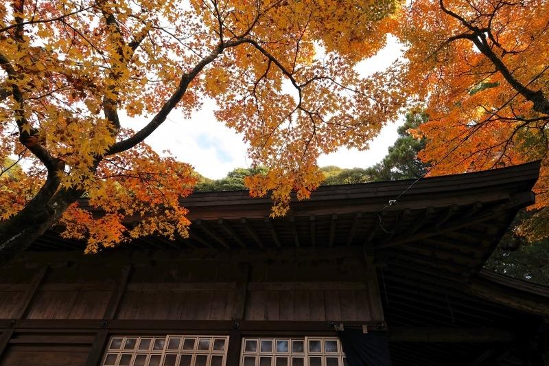 金比羅神社(長崎市)_f0315034_15485457.jpg
