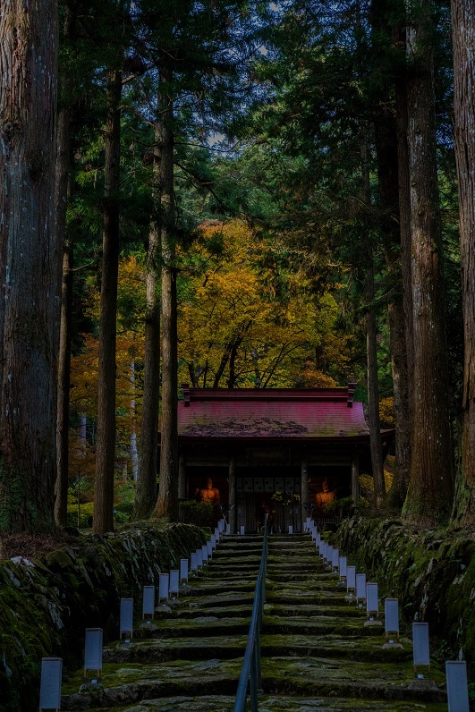 2019滋賀寺社~金勝寺_e0363038_10502029.jpg
