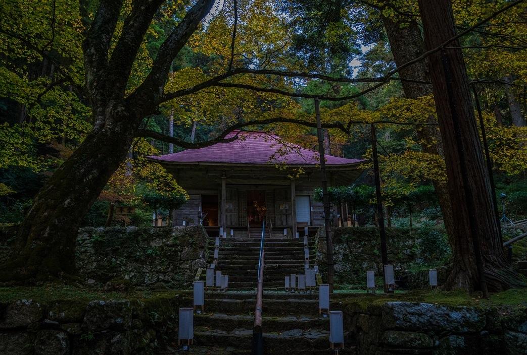 2019滋賀寺社~金勝寺_e0363038_10503353.jpg