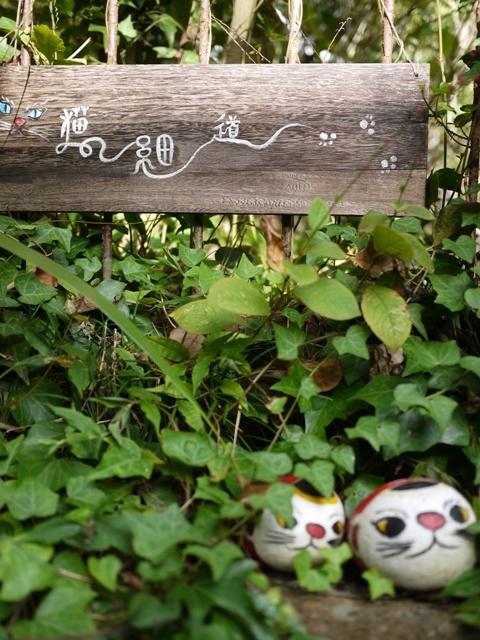 猫の細道 広島県尾道市東土堂町。_a0143140_23263705.jpg