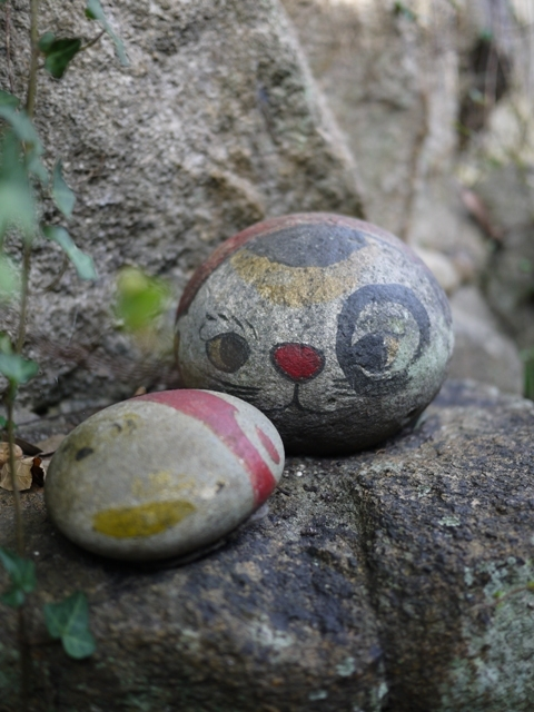猫の細道 広島県尾道市東土堂町。_a0143140_23310222.jpg