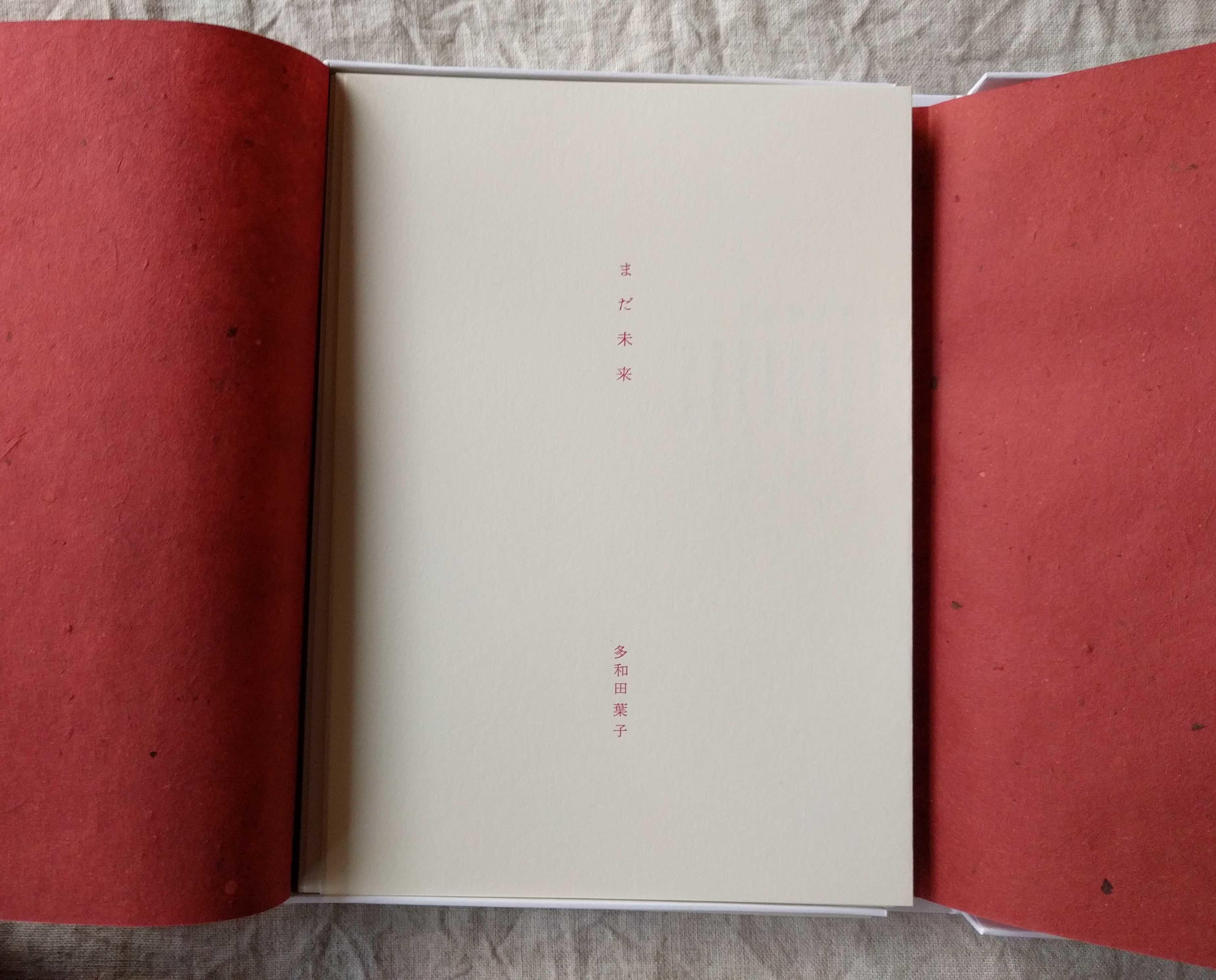 多和田葉子さんの詩集「まだ未来」_a0265743_20324813.jpg