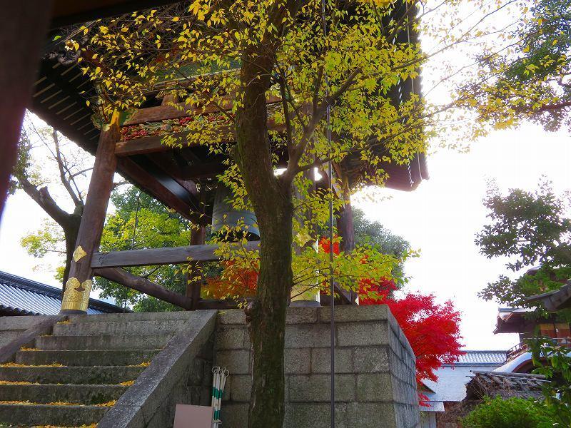 西本願寺「飛雲閣と鐘楼」20191126_e0237645_17063920.jpg