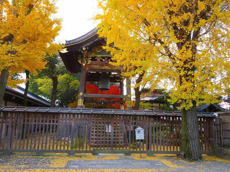 西本願寺「飛雲閣と鐘楼」20191126_e0237645_17063928.jpg