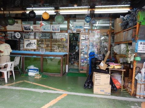 沖縄遠征記1、25日出船できず観光_f0175450_7491012.jpg
