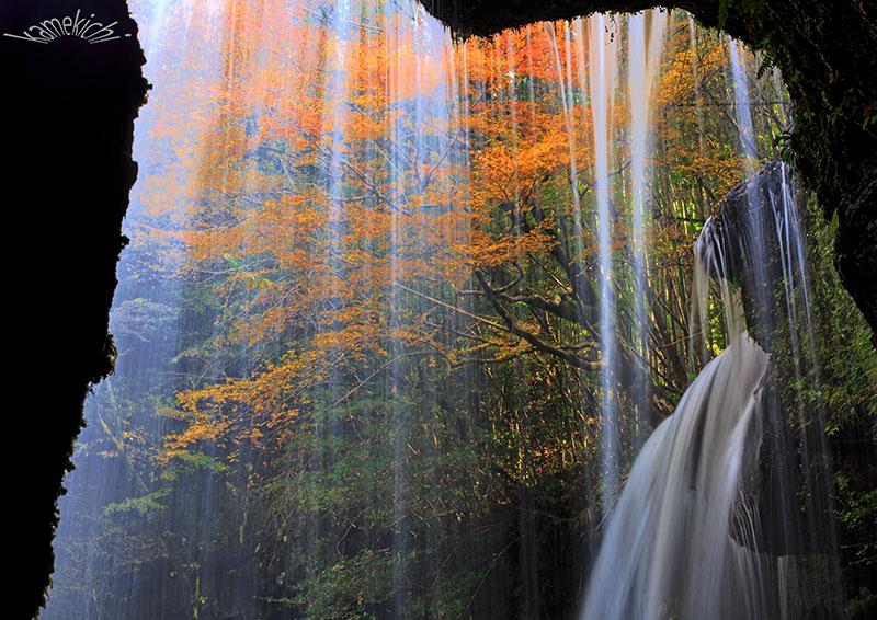 過年撮影の紅葉!(いずれも熊本地震前の撮影です。)_a0057752_09501583.jpg