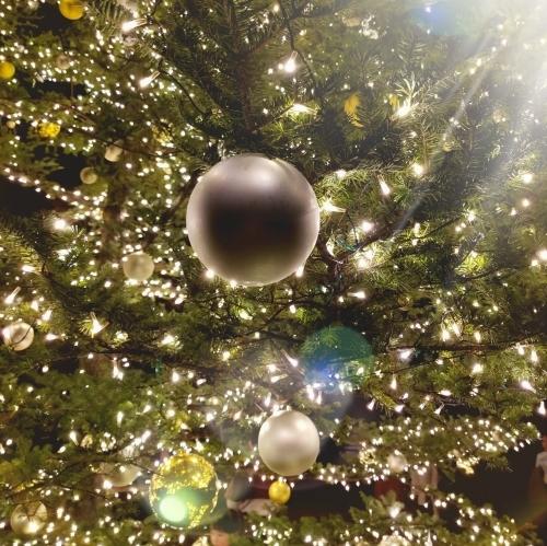 トンボの湯 * もみの木広場のクリスマスツリー★_f0236260_01193938.jpg