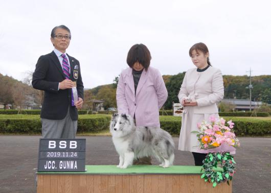 JKC大阪インター 単犬種部会展_f0126965_14210586.jpg