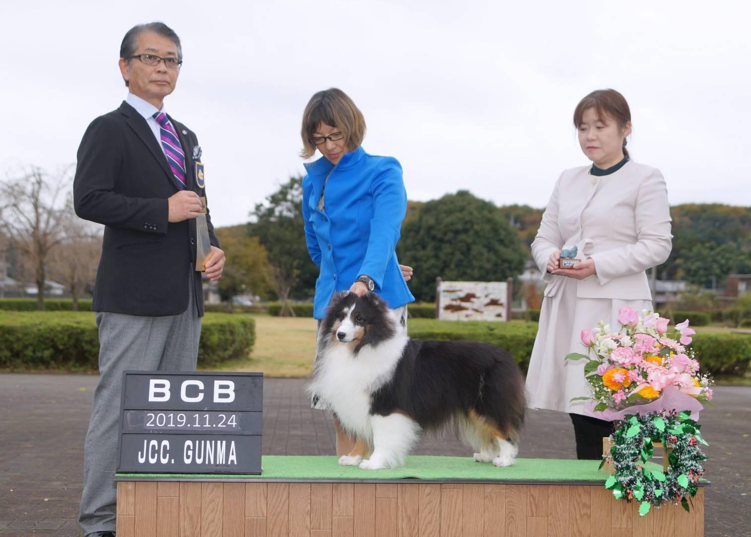JKC大阪インター 単犬種部会展_f0126965_14211220.jpg