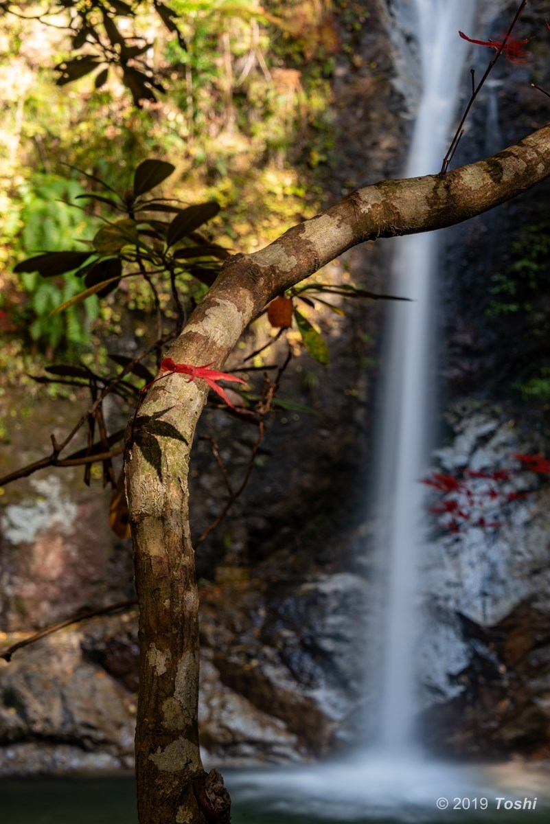 投石の滝_c0350572_14581742.jpg