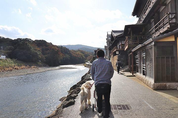 念願の「浜与」さんのしらす丼【旅行9】_b0111376_17510858.jpg