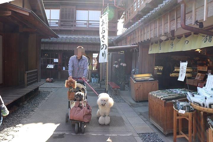 念願の「浜与」さんのしらす丼【旅行9】_b0111376_18095579.jpg