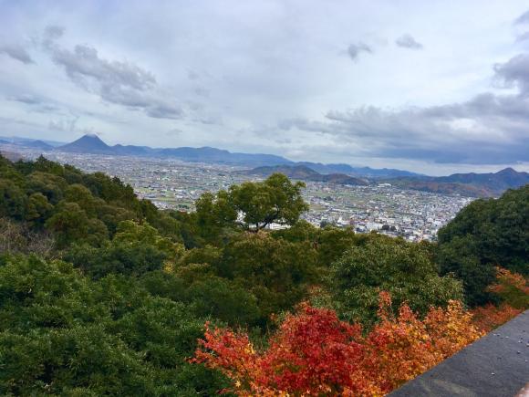 金比羅神社_d0339676_15155615.jpg