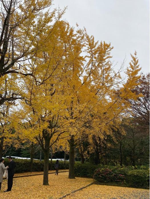 熱田神宮から名古屋駅周辺、観て食べて、地下街うろうろ、楽しんできました。_b0175688_20584976.jpg