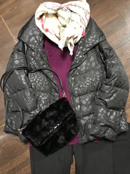 美術館へ雨寒の凍える日の服装と乃木坂ランチ_e0397389_13203419.jpeg