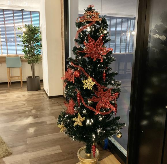 クリスマスツリー_a0215492_16385007.jpeg