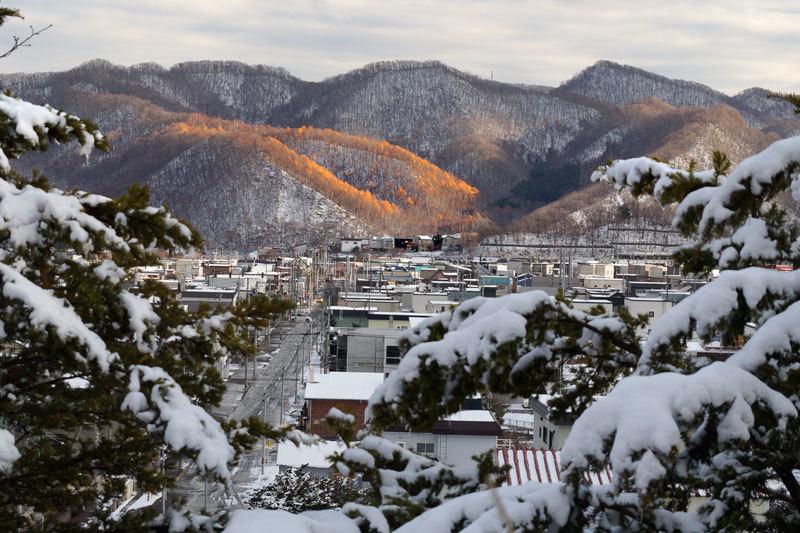 寒い朝_d0162994_08485239.jpg