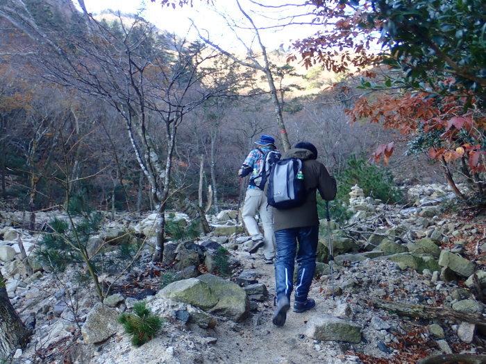 登山(ブナ清水~ハライド)  からの~朝明キャンプ!_a0049296_19051336.jpg