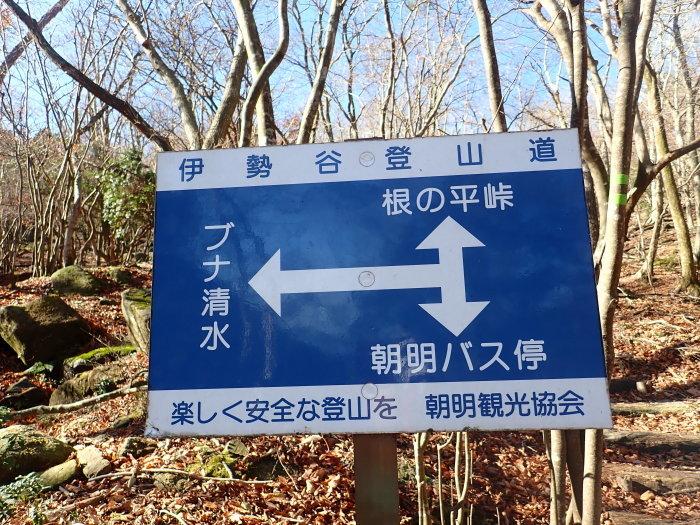 登山(ブナ清水~ハライド)  からの~朝明キャンプ!_a0049296_19053653.jpg