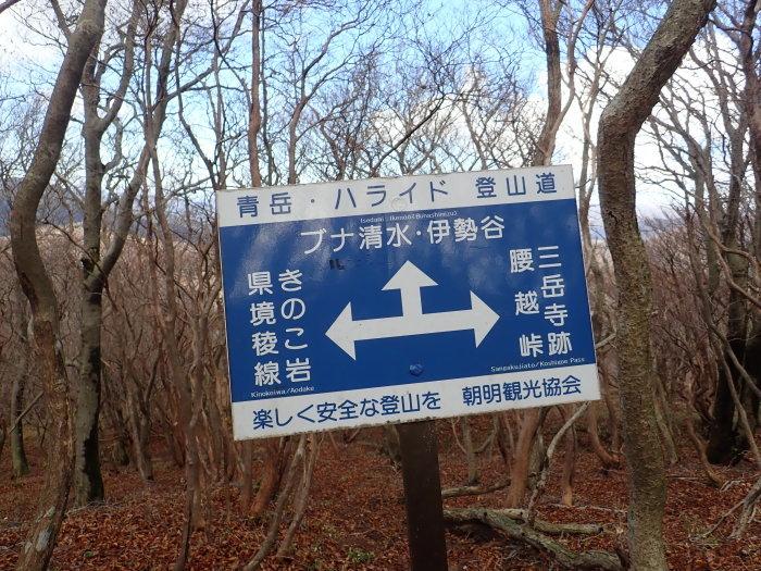 登山(ブナ清水~ハライド)  からの~朝明キャンプ!_a0049296_19201733.jpg