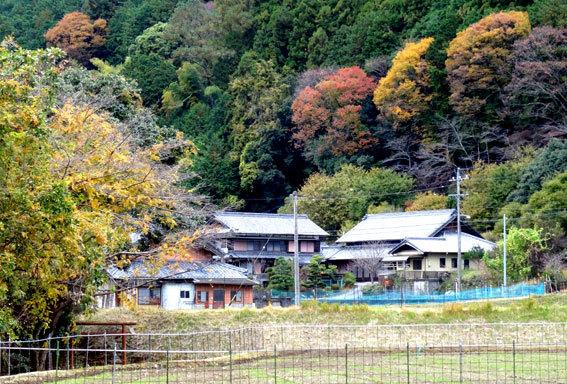 スロー紅葉の榊原温泉_b0145296_13030561.jpg