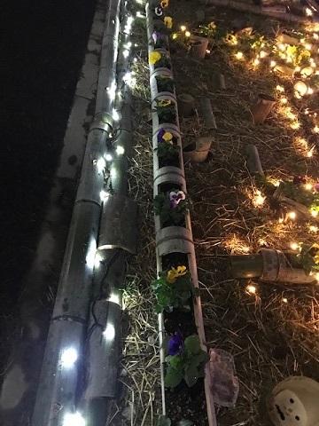 12月の夜は賑やか♪_f0242002_13110562.jpg